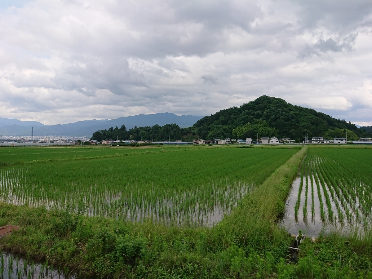 f:id:deep-karuma-waap-ec-real-s1:20190722193614j:plain