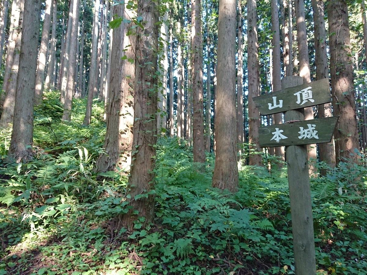 f:id:deep-karuma-waap-ec-real-s1:20190928000433j:plain