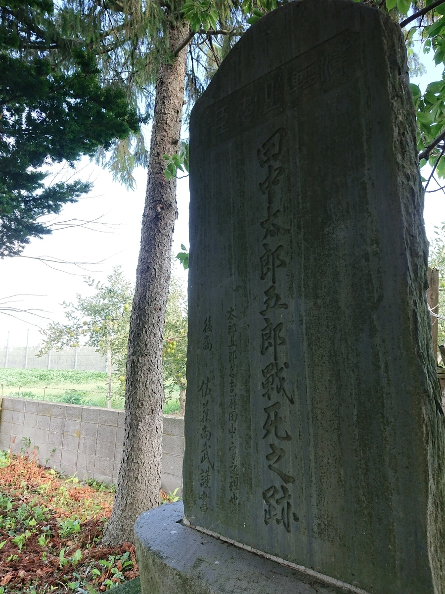 f:id:deep-karuma-waap-ec-real-s1:20200213221915j:plain
