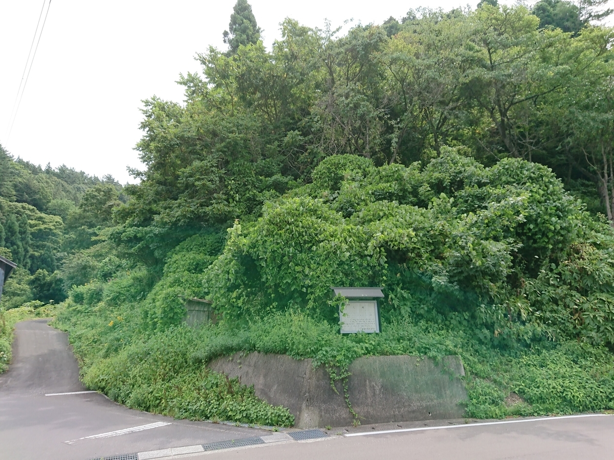 f:id:deep-karuma-waap-ec-real-s1:20200401012403j:plain