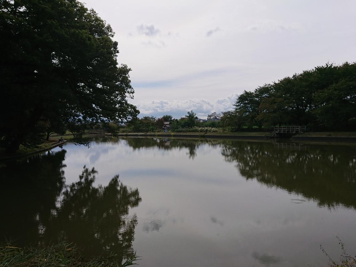 f:id:deep-karuma-waap-ec-real-s1:20200520181824j:plain