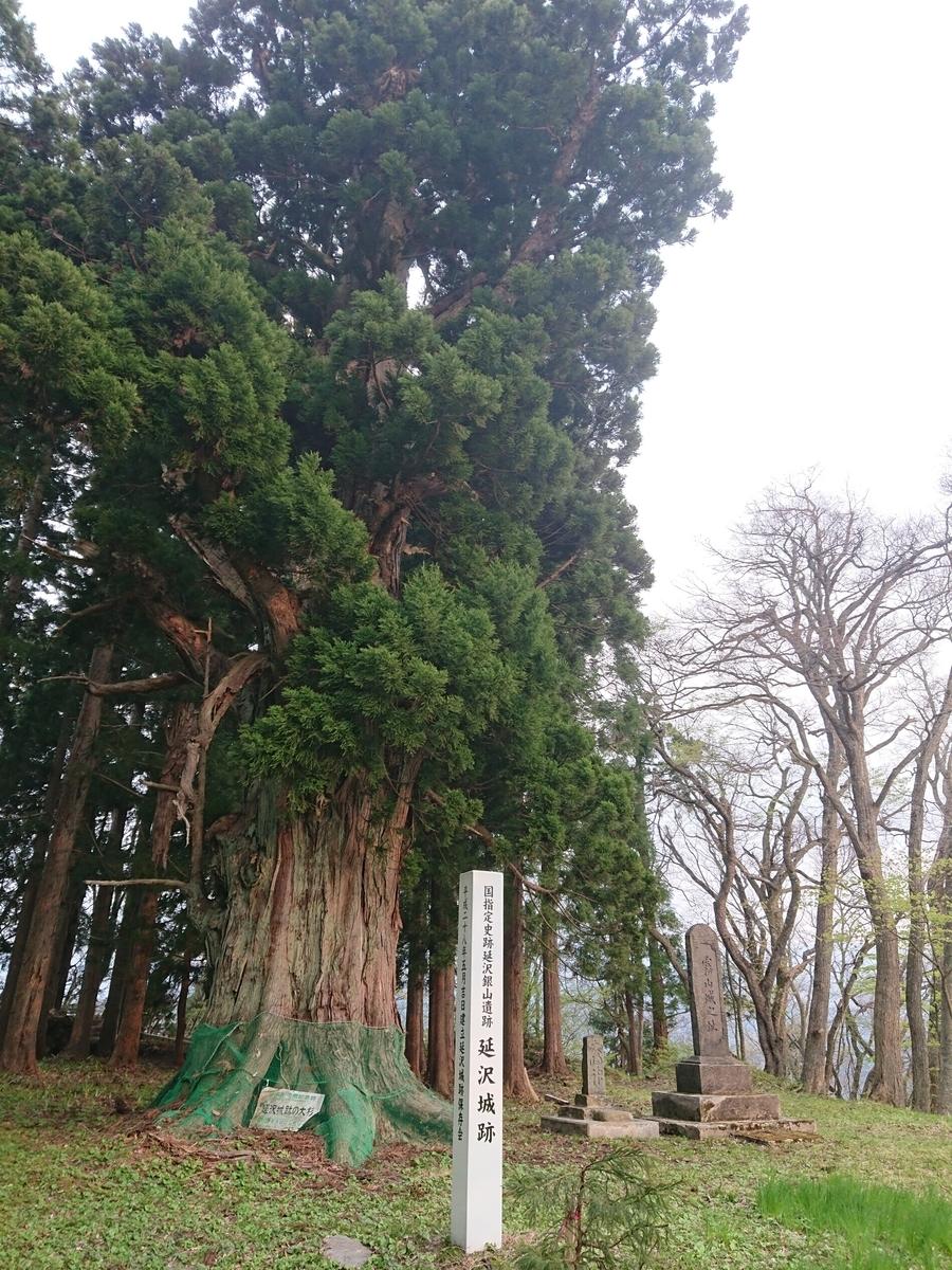 f:id:deep-karuma-waap-ec-real-s1:20200629163636j:plain