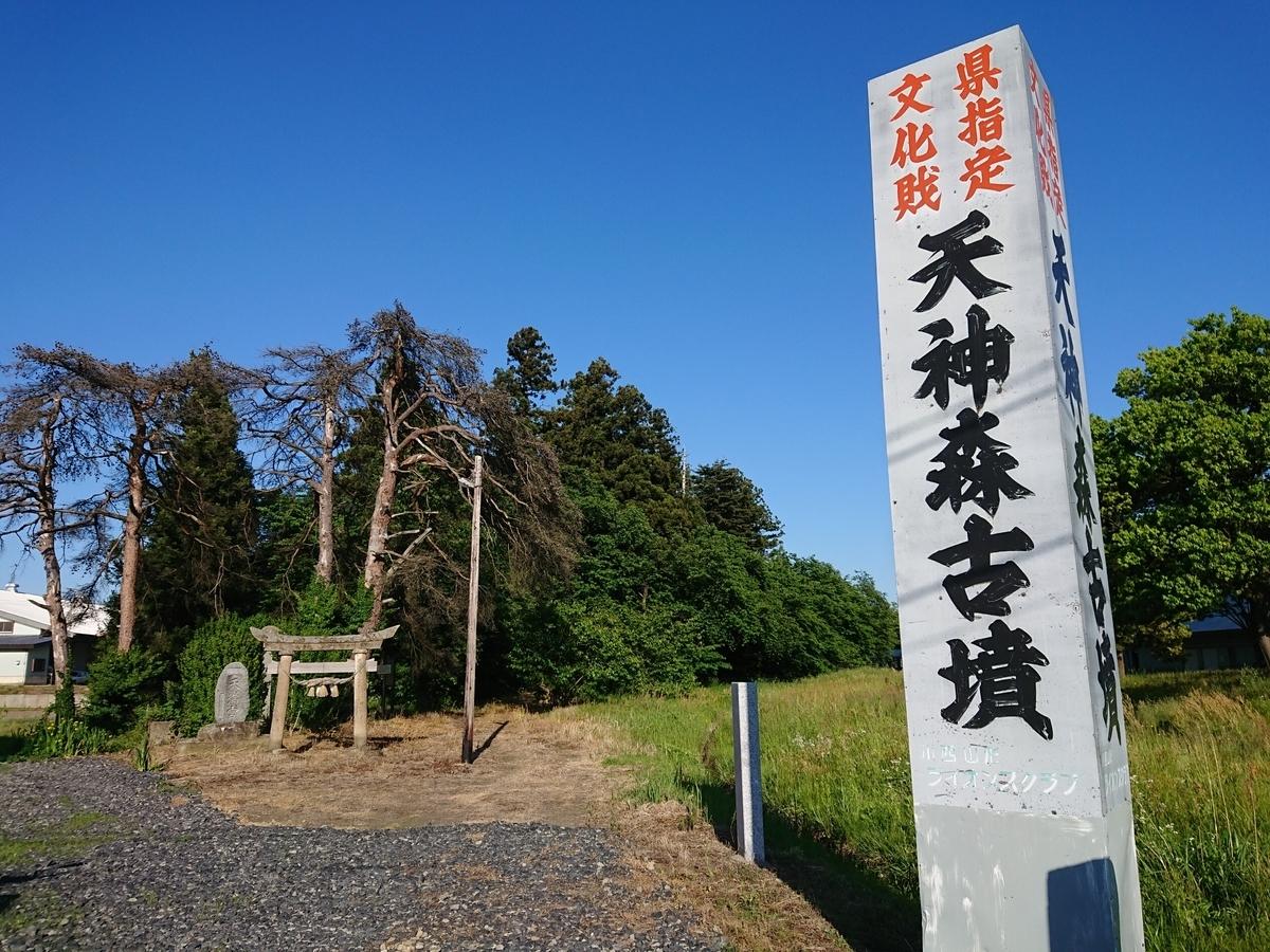 f:id:deep-karuma-waap-ec-real-s1:20201231124053j:plain