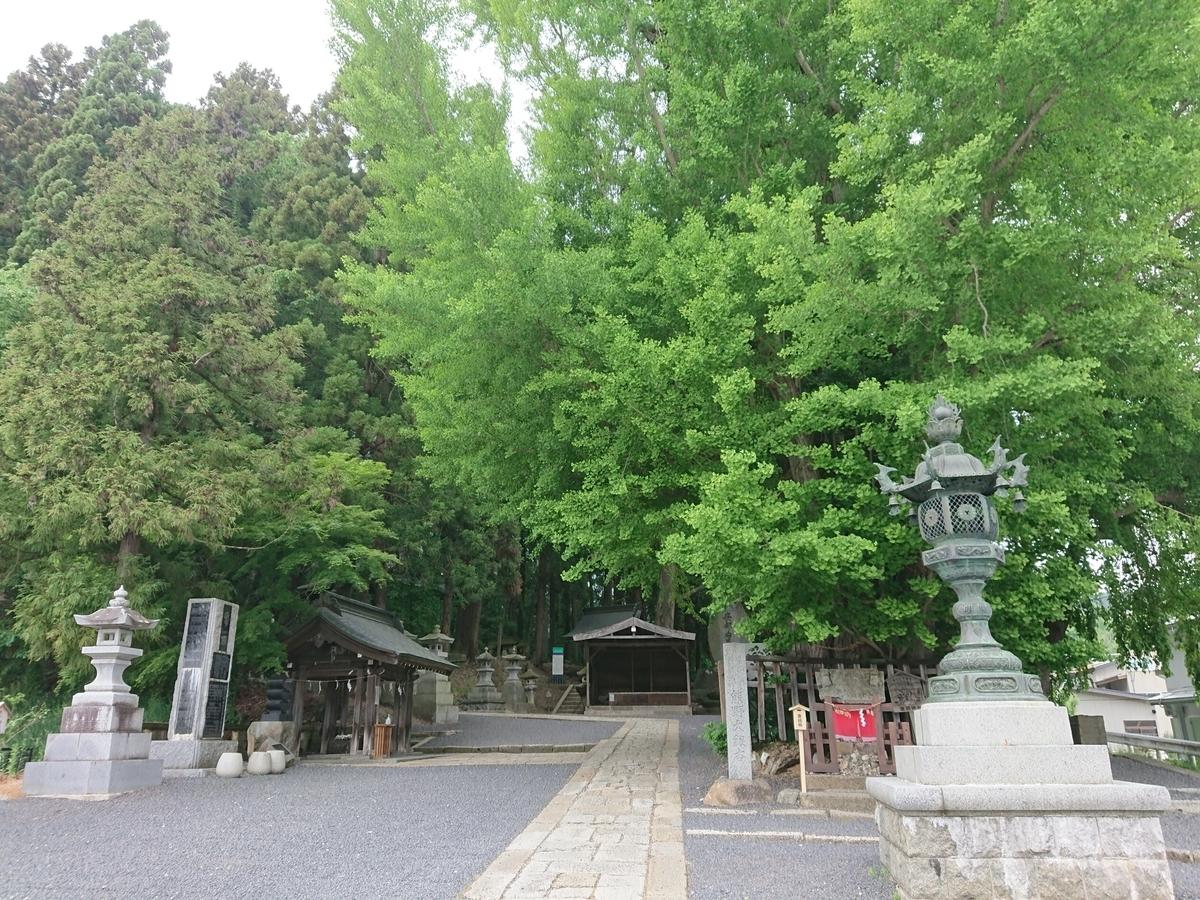 f:id:deep-karuma-waap-ec-real-s1:20210126221951j:plain