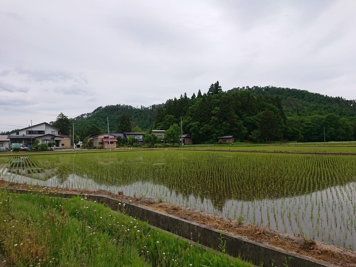 f:id:deep-karuma-waap-ec-real-s1:20210305233224j:plain