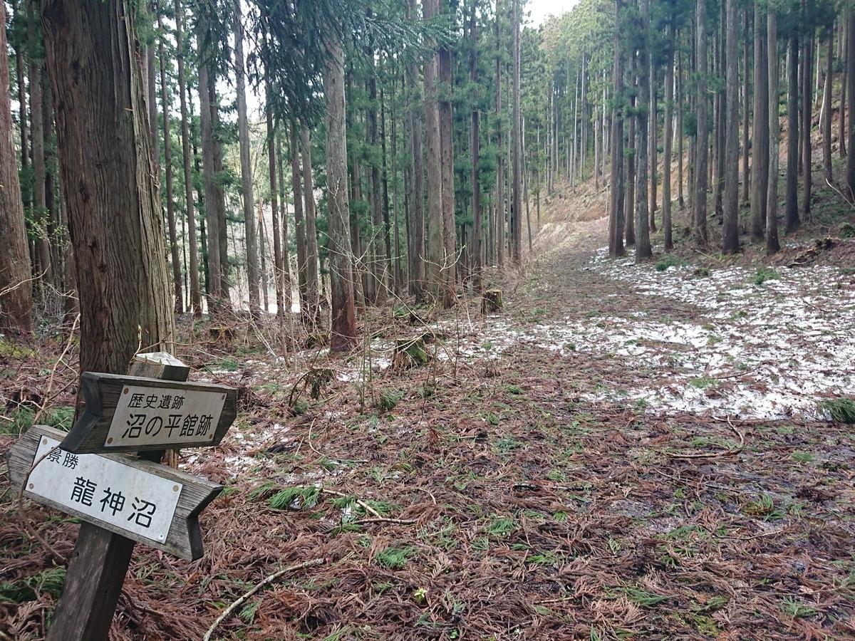 f:id:deep-karuma-waap-ec-real-s1:20210501081348j:plain