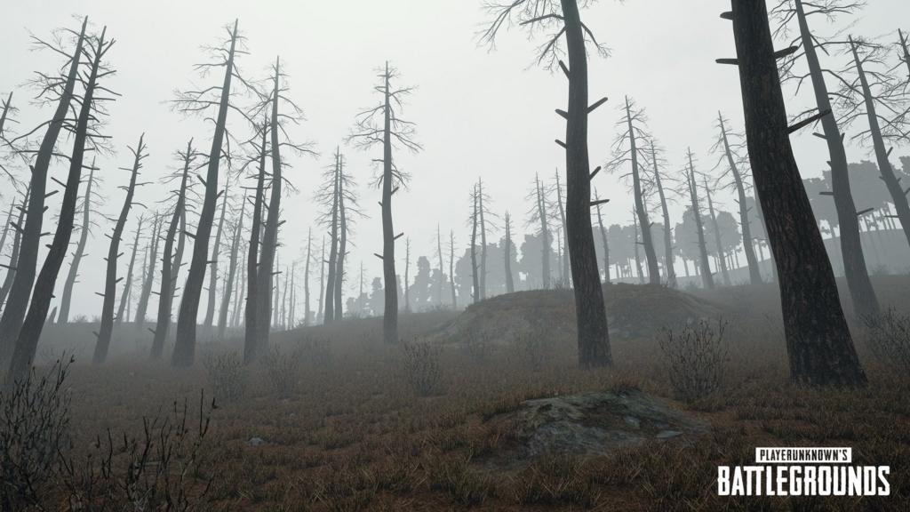 「PUBG」同時接続数100万人突破記念、次回アップデート時に追加される「天候:霧」の画像が公開