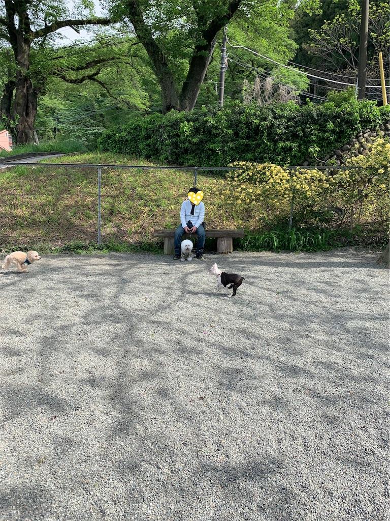f:id:den-chomo-toro:20190509153430j:image