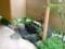 手水鉢@なな川