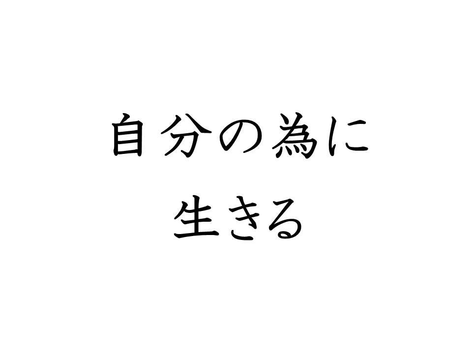 f:id:denken_1:20191211205405j:plain