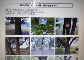 f:id:denshaouji:20200516165515j:plain