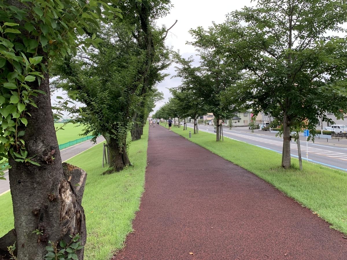 栃木県総合運動公園のウォーキングレーンは一周900M