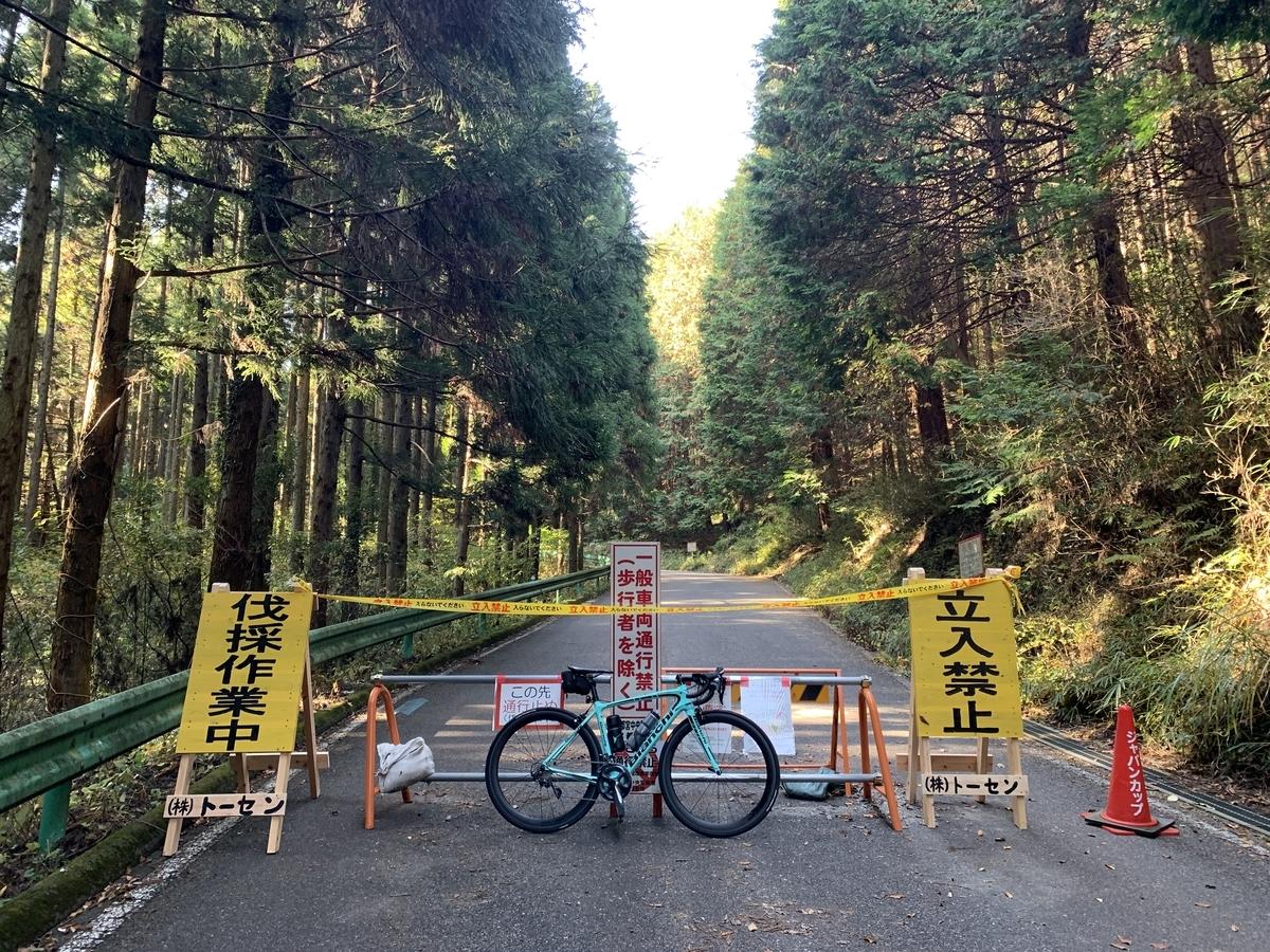 伐採作業の為、全面通行止となっている古賀志林道