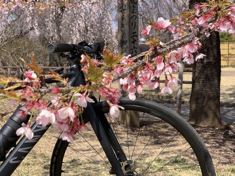 CANYON Roadlite 6.0 クロスバイク