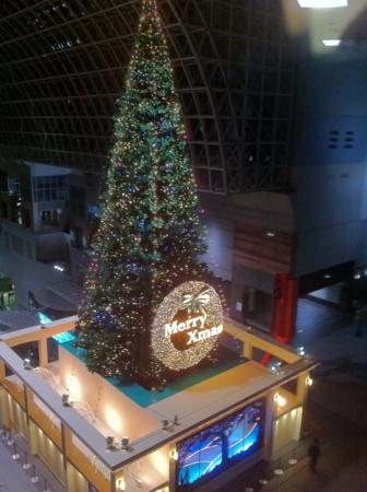20101124の京都伊勢丹からみたクリスマスツリー。