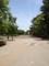 20120519の音楽。服部緑地公園。