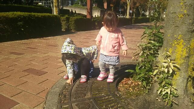 f:id:dera_noki:20161105223632j:image