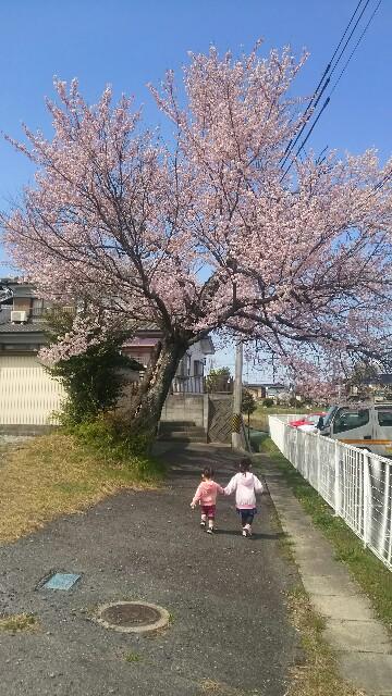 f:id:dera_noki:20170402213950j:image