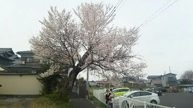 f:id:dera_noki:20170405231740j:image