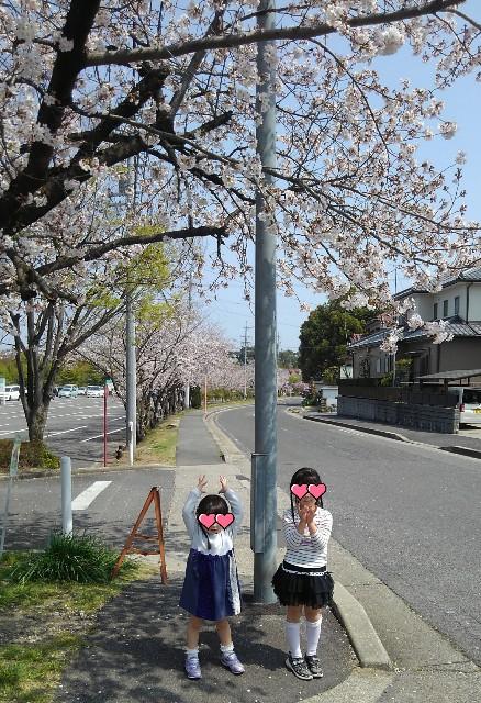 f:id:dera_noki:20190407215716j:image