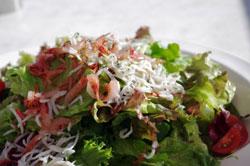 じゃこと海藻のサラダ