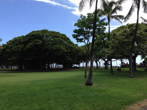 カピオラニ公園 in ハワイ