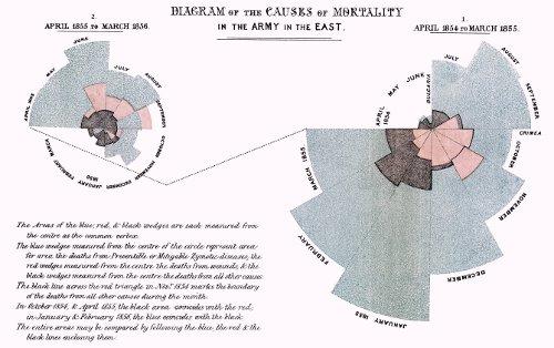 クリミア戦争における死因分析を表したグラフ