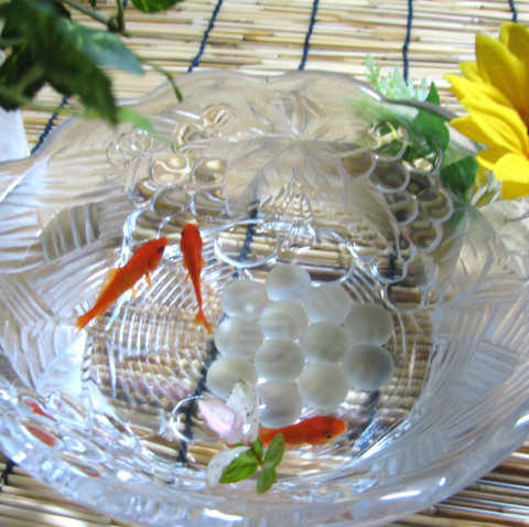 夏の風物詩、金魚