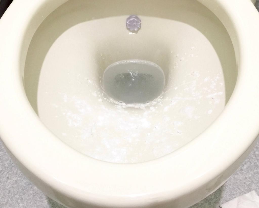 トイレそうじ9 便器 重曹・クエン酸