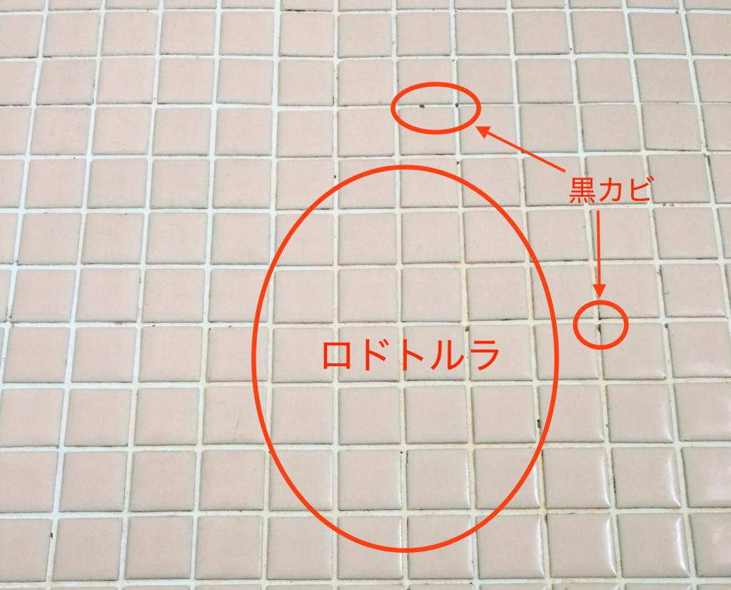 お風呂のタイル