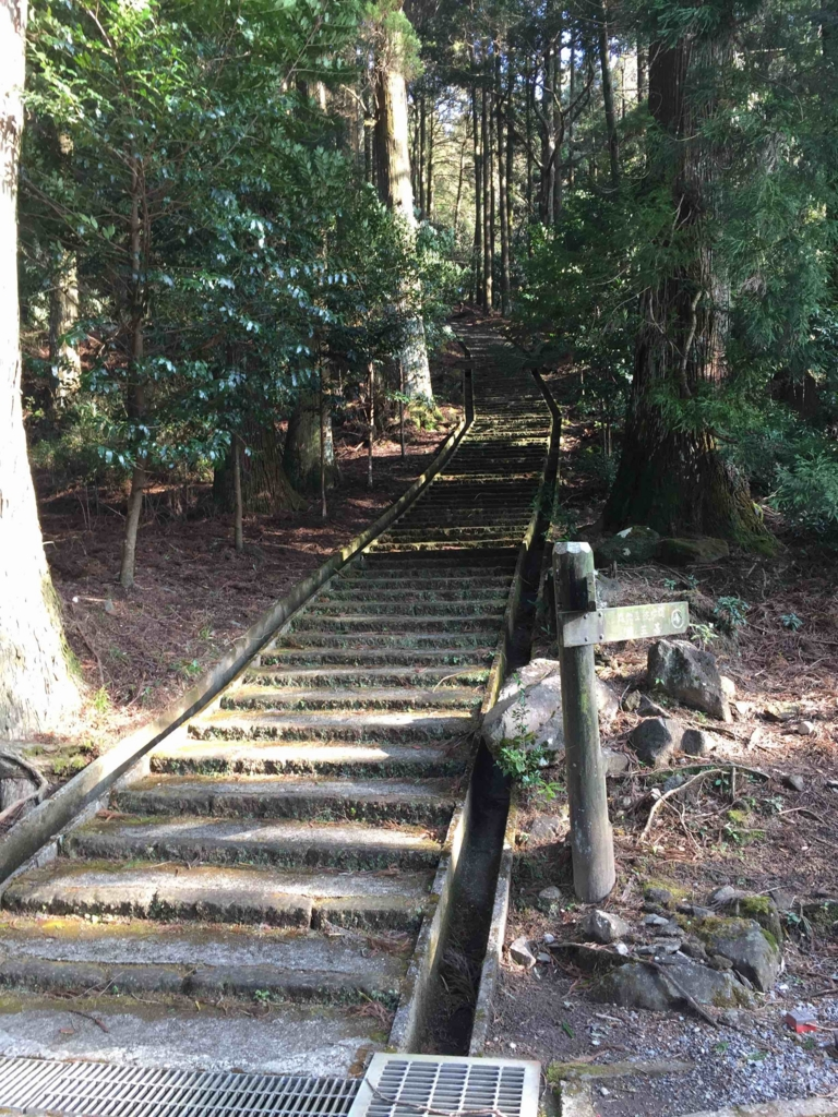 階段を下っていきます。
