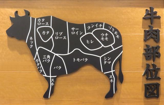 ステンドグラス 肉の部位