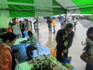 サボテンフェア2015雨3
