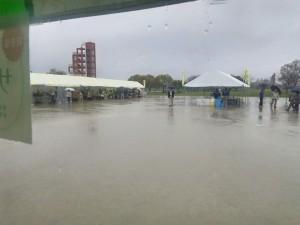 サボテンフェア2015雨2
