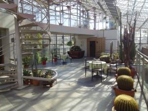 緑化植物園2