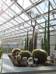 緑化植物園1