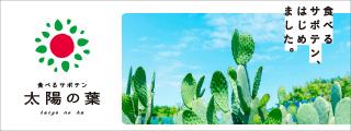 食べるサボテン 太陽の葉
