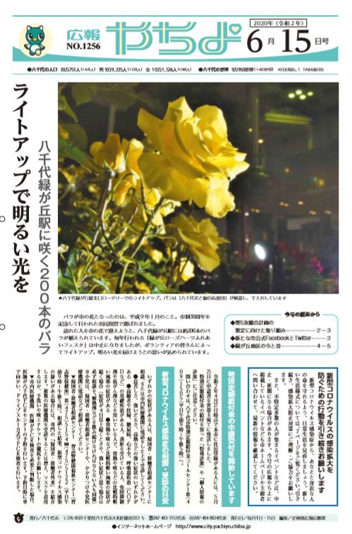 f:id:diet-hatsumo:20200618232944p:plain