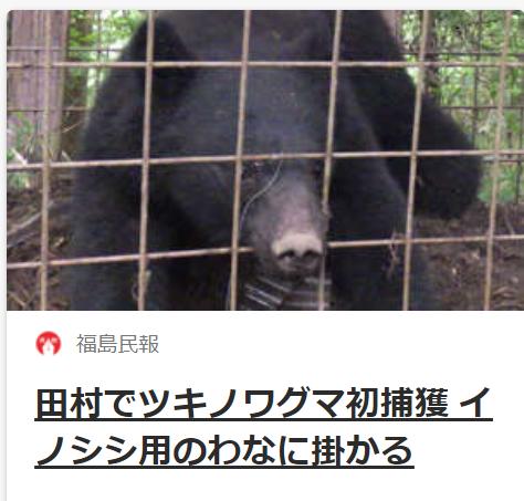 f:id:diet-hatsumo:20210521020638p:plain