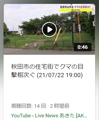 f:id:diet-hatsumo:20210722224727p:plain