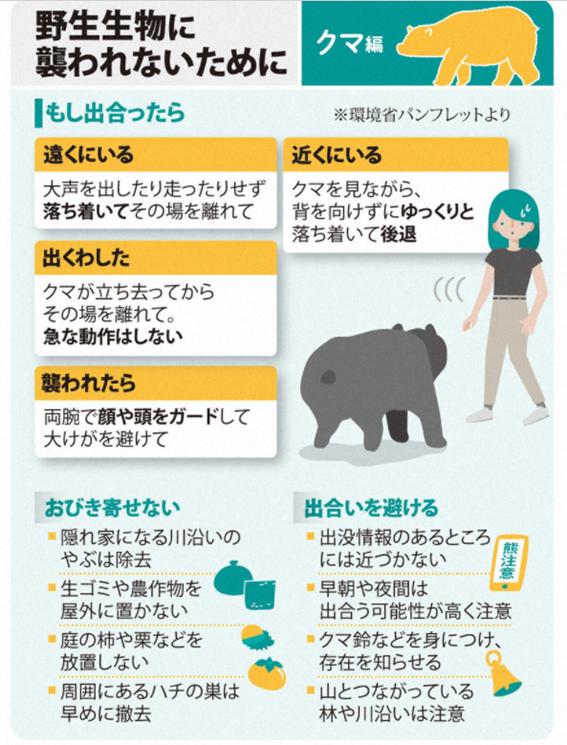 f:id:diet-hatsumo:20210722232630p:plain
