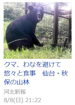 f:id:diet-hatsumo:20210809231304p:plain