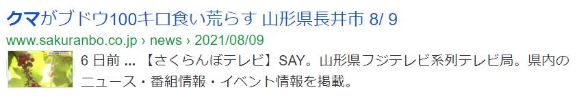 f:id:diet-hatsumo:20210815215503p:plain