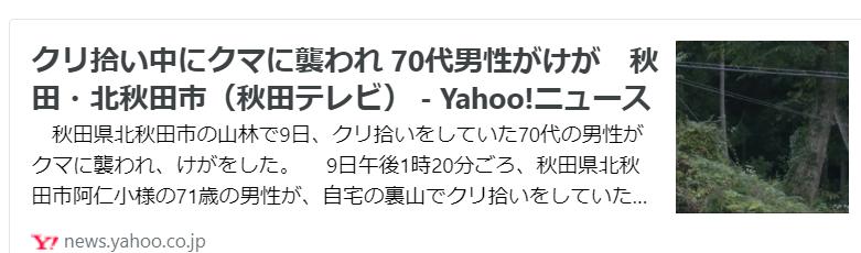 f:id:diet-hatsumo:20211012233715p:plain