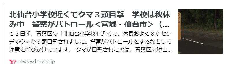 f:id:diet-hatsumo:20211013231115p:plain