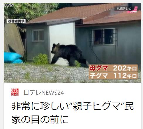 f:id:diet-hatsumo:20211020230914p:plain