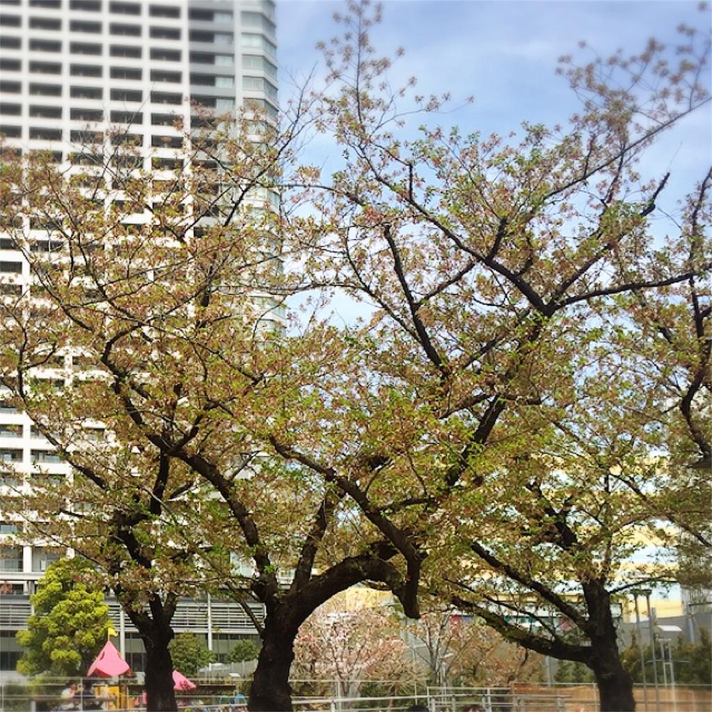 f:id:dietseikoubanzai:20170418080625j:image
