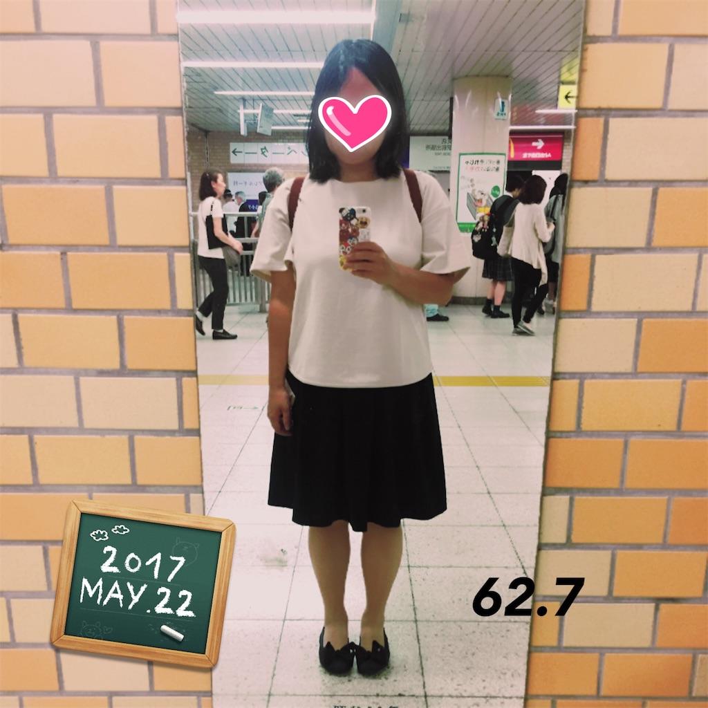 f:id:dietseikoubanzai:20170522230526j:image