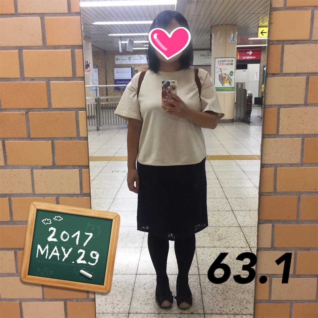 f:id:dietseikoubanzai:20170530175209j:image