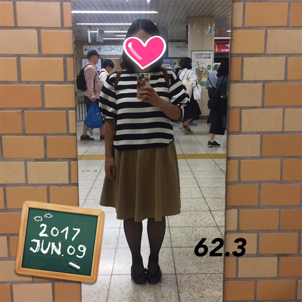 f:id:dietseikoubanzai:20170612080801j:image